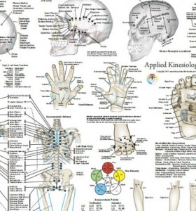ADD Alt Attribute